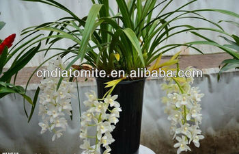 orchid growing medium soil conditioner in horticultural