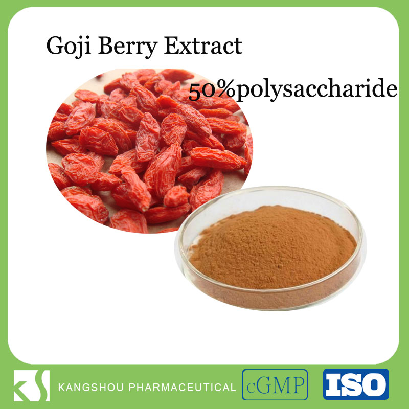 High quality health product goji berry goji berry powder goji extract
