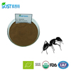 /product-detail/high-quality-black-ant-extract-for-male-enhancement-60544352742.html