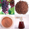 Red Grape Seed Extract