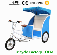 electric drive 3 wheel flatbed trike