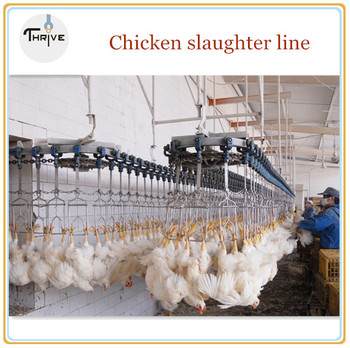 chicken killing machine