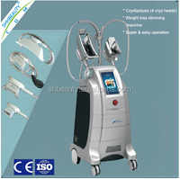 Cryolipolysis cryogenic lipolysis NO side effects/Cryolipolysis cool lipo sculpting/Cryolipolysis cold body sculpting cost