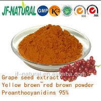 grape seed proanthocyanidins B2 4%