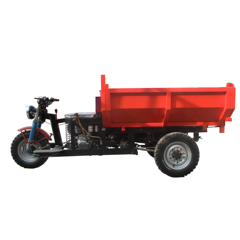 Licheng hot sale new model hydraulic brake cargo gas 3 wheel motorcycle