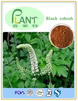 Black cohosh extract powder ;2.5%-8% triterpene glycosides