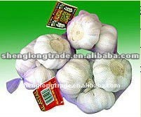 2012 new crop china garlic price