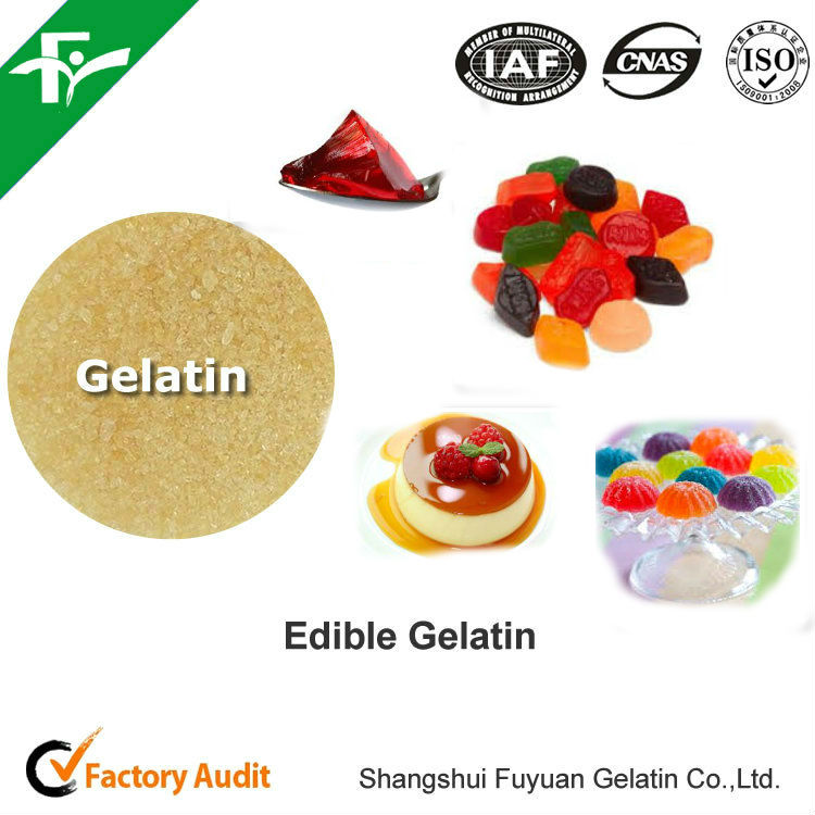 Chewing Gum Bases Type Edible Gelatin