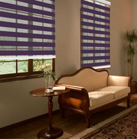 roller zebra sheer shades day and night blind from China manufacturer