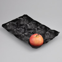 Fruit and Vegetable Display Tray PP Fruit Tray For tomato High Quality PP Fruit Packaging tray price for sale