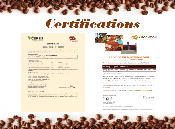 Coffee Beans - Grade-A Arabica Green Coffee Beans