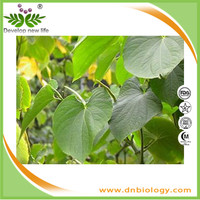 Good manufacturer supply high quality kava extract powder has strong anti-diabetes effects