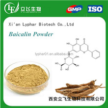 Radix Scutellariae Extract,85% Purity Skullcap Extract Baicalin