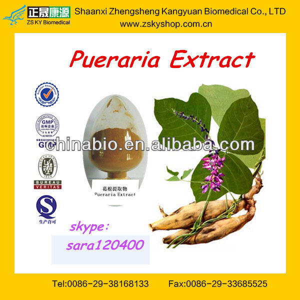 Best Pueraria Extract / Kudzu Root Extract