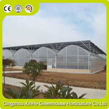 PE Plastic Film Cover Material Large Size Commercial Vegetables Greenhouse For Sale