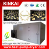 Apple / mango / pineapple / coconut flake high temperature drying equipment /dryer machine/tropic fruit drying machine