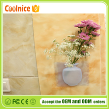 Coolnice new products silicone magic home decoration vase