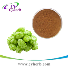 100% natural european hops flower extract Humulus Lupulus Extract