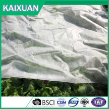 Hot sale Factory supply weed control mat/ground cover mesh fabric / agricultural black plastic ground cover