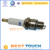 Wholesale Gasoline Bike 48cc 49cc 50cc 60cc 66cc /80cc for 2 stroke bicycle engine kit part spark plug ignition plug