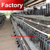Best seling 96 birds chicken breeding cage with great price