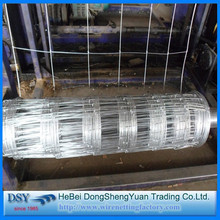 hot dipped galvanized farm field fence/fixed knot fene for cattle security