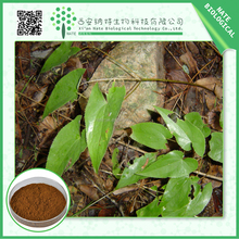 Low Cost High Quality herbal extract/natural epimedium p.e.