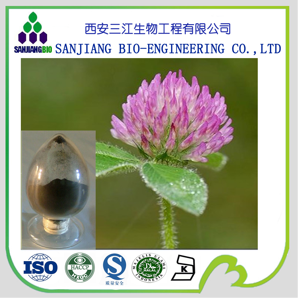 2017 hot sale PAHs meet EU regulations biochanins 2.5% 8% 20% 40% isoflavone red clover extract