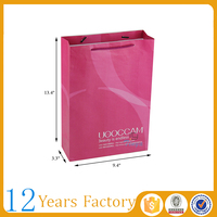 color disposable clothes paper bags chennai
