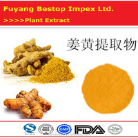 Jiang Huang Factory Supply Turmeric Root Curcuma Longa L. Extract