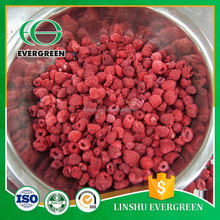 Custom New Product Freeze Dried Raspberry