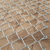 High quality galvanized Silver Iron Wire fence prices chain link