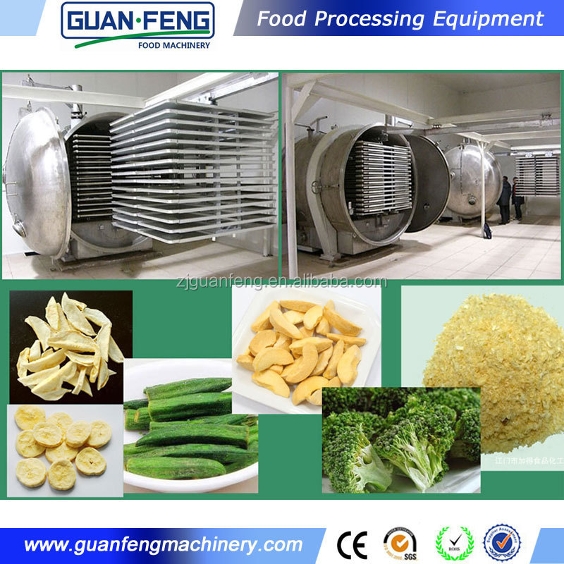 China Goods Wholesale Industrial Freeze Dryer FD