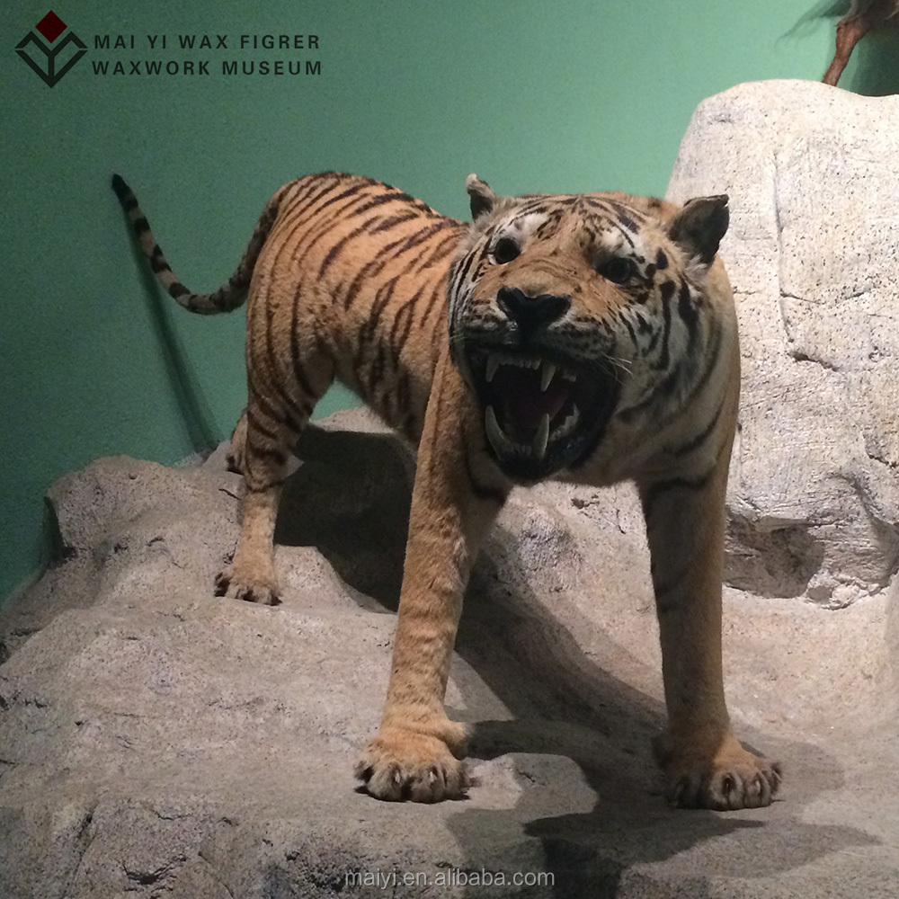 Resin fiberglass Animal Statue of tiger