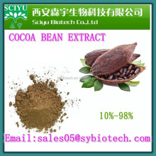 SCIYU Factory Supply High Quality COCOA BEAN EXTRACT POWDER
