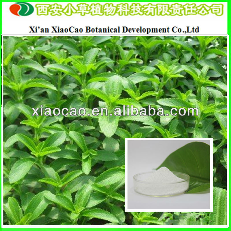 Supply Natural Stevia Rebaudiana Powder/Stevia Leaf Extract Stevioside/Diabetic Stevia Sugar For Food Additives