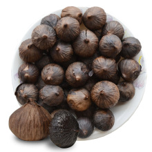 japanese black garlic/black garlic seeds sale