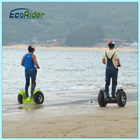 New products 2016 lithium battery folding electric bike