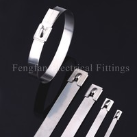 Stainless Steel Cable Ties Ball Lock
