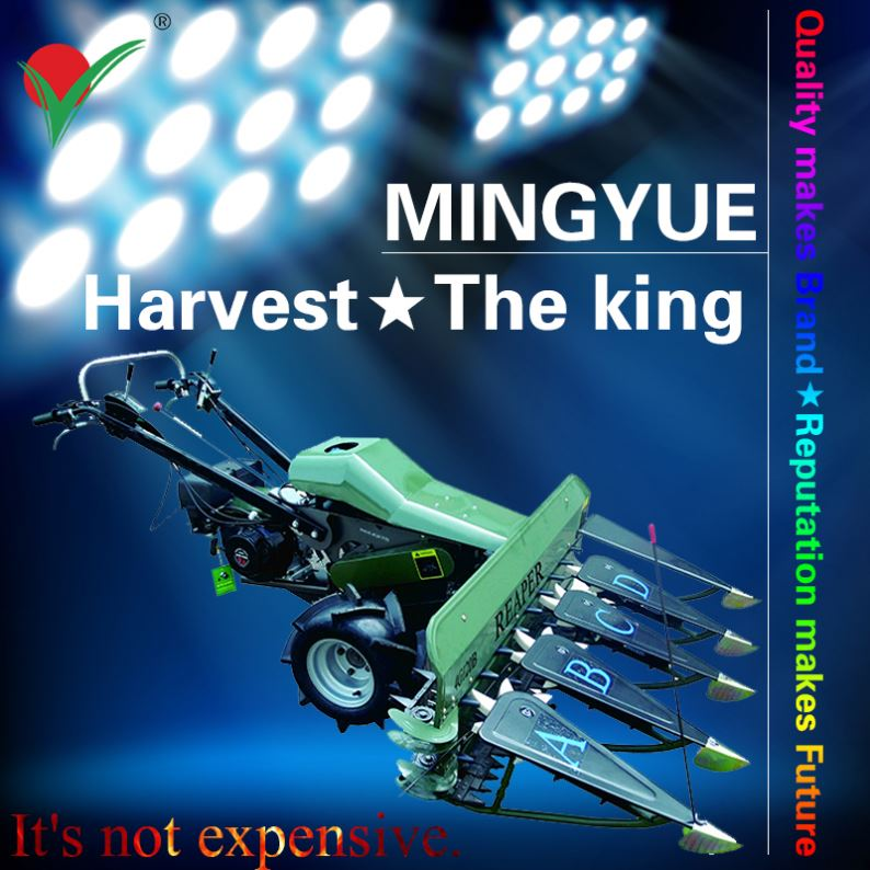 Agriculture Chain Invention Harvesting Of Combine For The Reaper Sword Reed