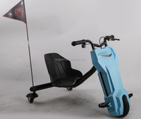Li battery 12V/9Ah electric tricycle mobility scooter