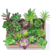 Wholesale Artificial plant and high quality MIX 17 DIFFERENT DESIGNS artificial succulents beautiful faux succulents