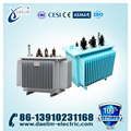 100kva 11/0.4 Tap Changer for Pole Mounted Distribution Transformer