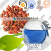 Bulk price food coloring manufacturer of gardenia blue