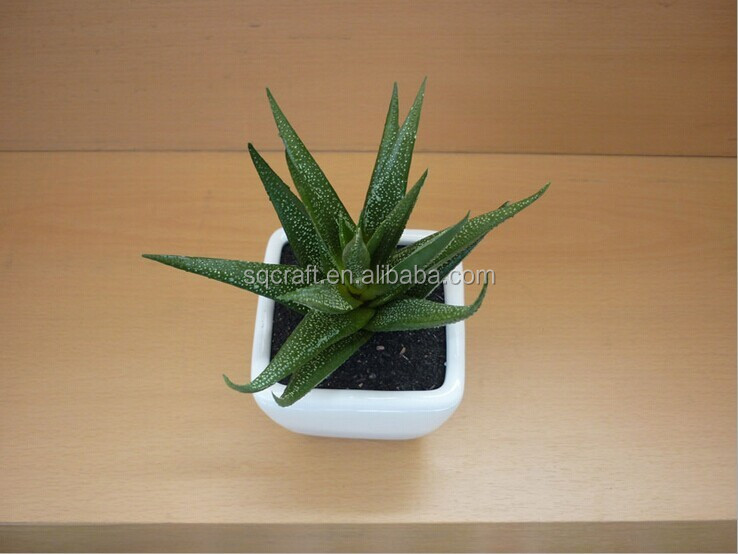 Best Exporting Factory Direct Sell Decorative Mini Succulent Plant Artificial Zebra Aloe Bonsai Potted