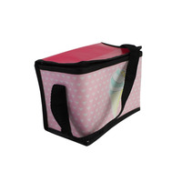 Custom frozen food fashion insulated pp non woven cooler bag