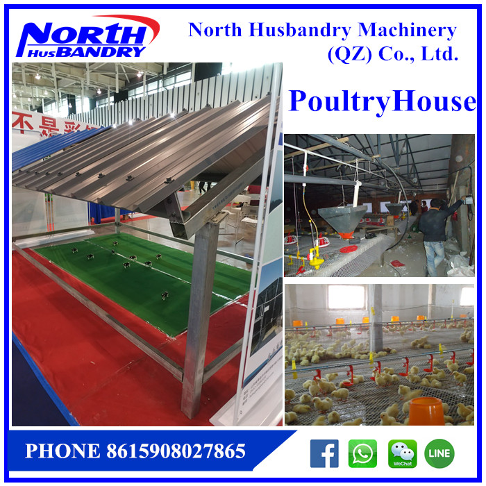 automate poultry cages exhaust fan|Environmental ventilation fan|automate exhaust fan
