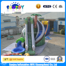 New design screamer palm inflatable water slide with pool