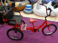 China metal car cheap adult passenger tricycle