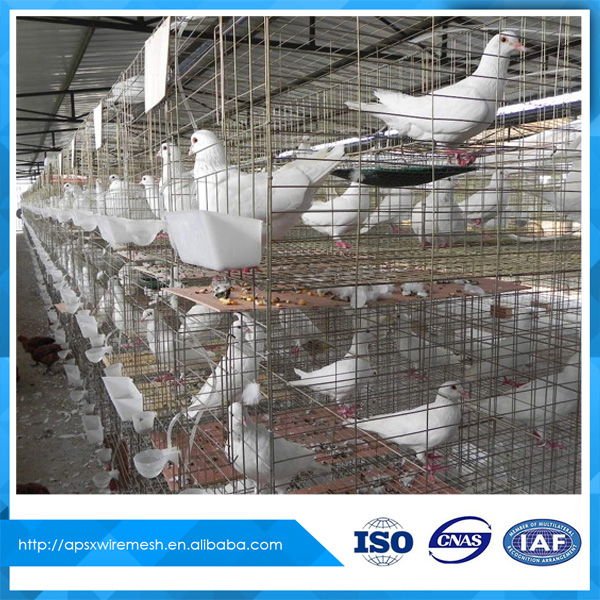 Pigeon breeding metal wire cage